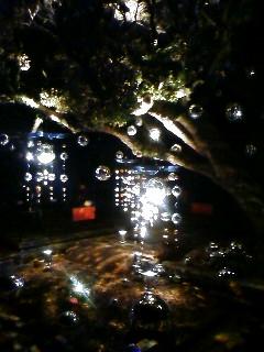 『バレンタインアイランド江の島2008〜湘南の宝石〜』