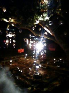『バレンタインアイランド江の島2008〜湘南の宝石〜』御来場ありがとうございました!